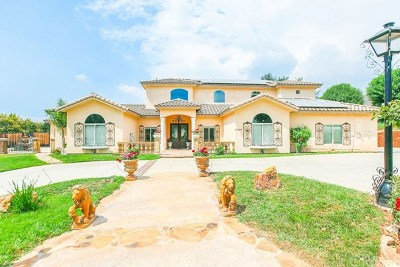 Yucaipa Single Family Home For Sale: 37220 Oak View Road