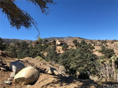 San Bernardino County Residential Lots & Land For Sale: 8055 Scenic Drive
