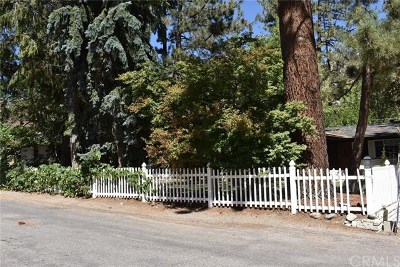 Wrightwood Single Family Home For Sale: 928 Snowbird Road