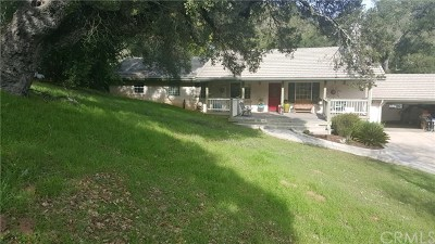 Atascadero Single Family Home For Sale: 14060 Morro Road