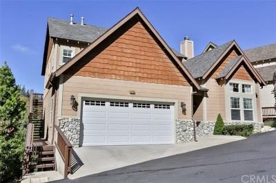Lake Arrowhead Single Family Home For Sale: 28475 Fresh Spring Lane