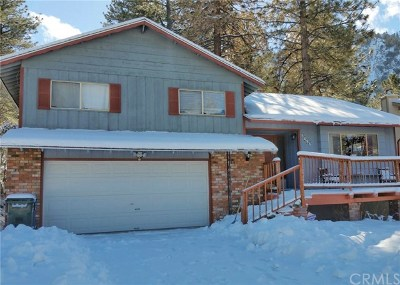 Wrightwood Single Family Home For Sale: 5496 Lone Pine Canyon Road