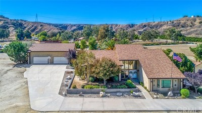Redlands Single Family Home For Sale: 28450 Live Oak Canyon Rd