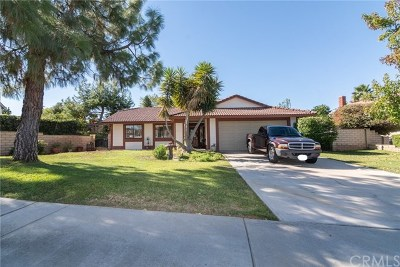 Riverside Single Family Home For Sale: 1228 Shakespeare Drive
