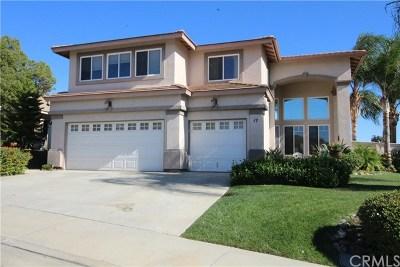 Lake Elsinore Single Family Home For Sale: 17 Corte Rivera
