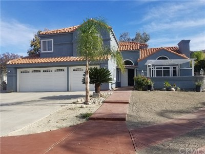 Colton Single Family Home For Sale: 3041 Canyon Vista Drive