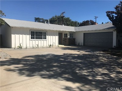 Redlands Single Family Home For Sale: 315 S San Mateo Street