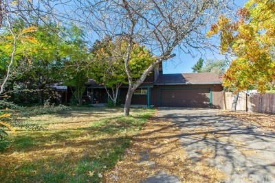 Kelseyville Single Family Home For Auction: 5625 Staheli Drive