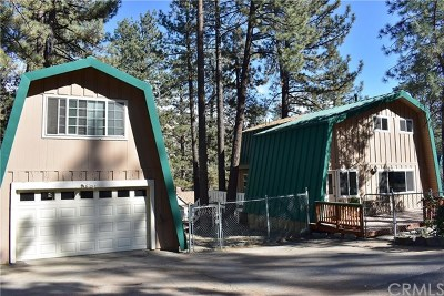 Wrightwood Single Family Home For Sale: 1646 Barbara Drive