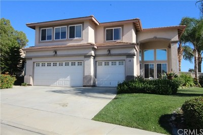 Lake Elsinore Single Family Home For Sale: 17 Corte Rivera