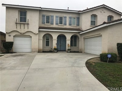 Eastvale Single Family Home For Sale: 13533 Quail Run Road