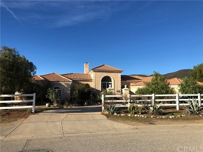 Agua Dulce Single Family Home For Sale: 34965 Sweetwater Drive