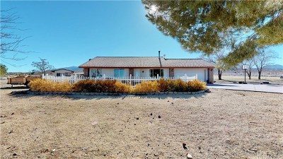 Llano Single Family Home For Sale: 22600 E Avenue Y3
