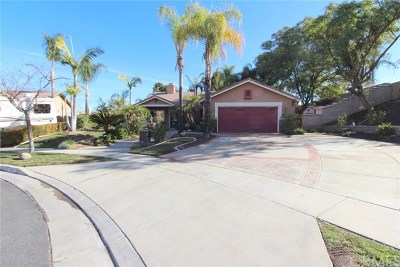Corona Single Family Home For Sale: 3585 Ambrose Circle