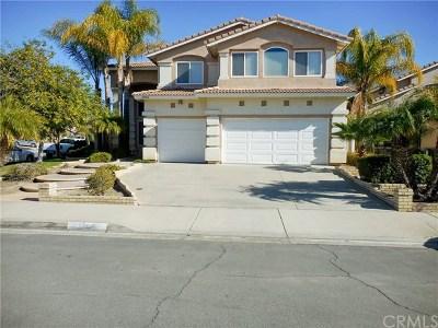 Murrieta Single Family Home For Sale: 23904 Button Bush Court