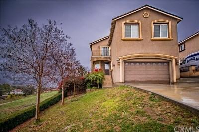 Riverside, Temecula Single Family Home For Sale: 13018 Via Tuscany