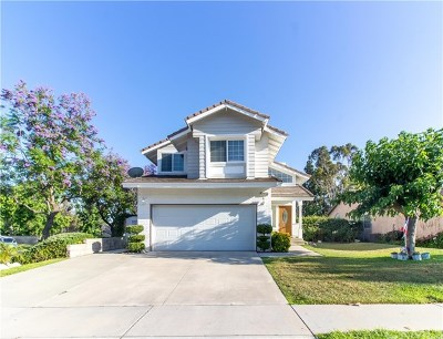 Rancho Cucamonga Single Family Home For Sale: 10695 Concannon Street