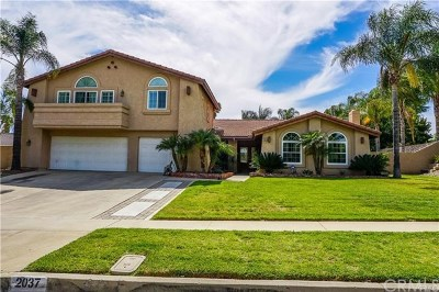Upland Single Family Home For Sale: 2037 N Tulare Way