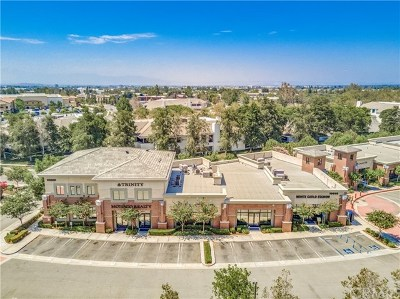 Rancho Cucamonga Commercial For Sale: 10803 Foothill Boulevard #110