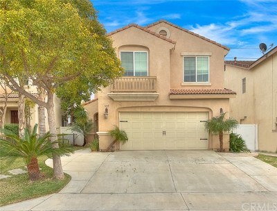 Perris Single Family Home For Sale: 927 Avenida Nube
