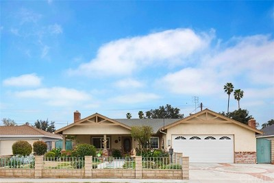 Riverside Single Family Home For Sale: 8562 Raintree Avenue