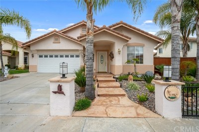 Temecula Single Family Home For Sale: 41908 Vardon Drive