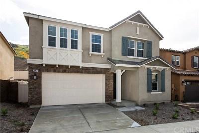 Corona Single Family Home For Sale: 24824 Acadia Drive