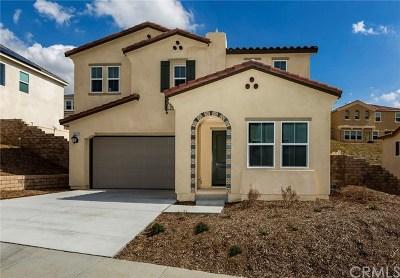 Corona Single Family Home For Sale: 24870 Elison Court