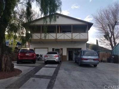 Lake Elsinore Single Family Home For Sale: 33215 Adelfa Street
