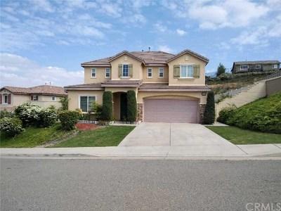 Lake Elsinore Single Family Home For Sale: 4113 Larkspur Street