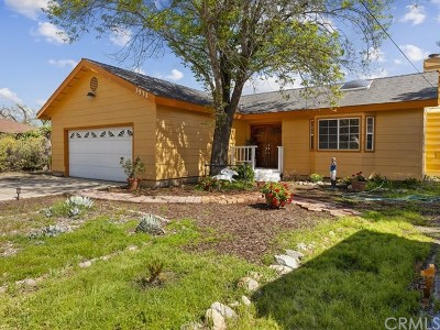 Norco Single Family Home For Sale: 3531 Valley View Avenue