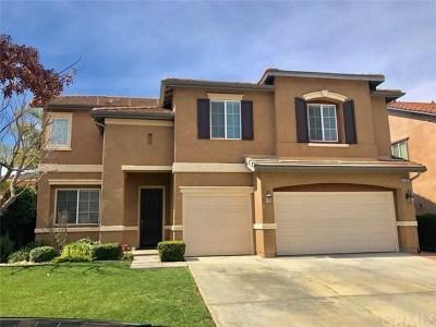 Murrieta Single Family Home For Sale: 33703 Verbena Avenue