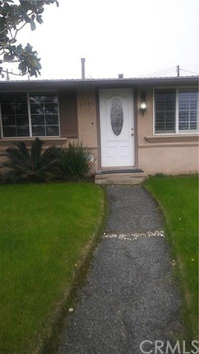 Colton Single Family Home For Sale: 1795 Alston Avenue