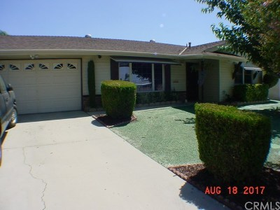 Hemet Single Family Home For Sale: 530 S Lyon Avenue
