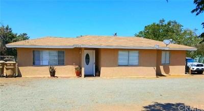 Hesperia Single Family Home For Sale: 15008 Wells Fargo Street