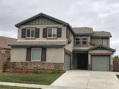 Hemet Single Family Home For Sale: 565 Wildrye Court