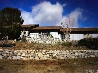 Lake Hughes Single Family Home For Sale: 26865 Pine Canyon Road