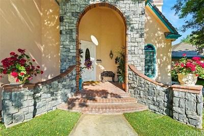 Temecula Single Family Home For Sale: 43544 Manzano Drive