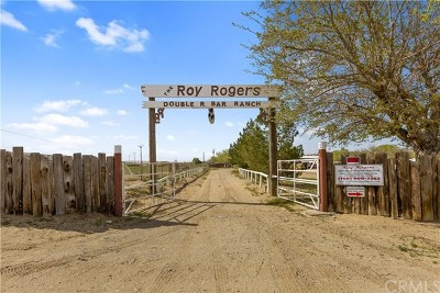 Victorville Single Family Home For Sale: 14433 Roy Rogers Ranch Road