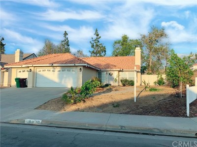 Moreno Valley Single Family Home For Sale: 16220 Starview Street