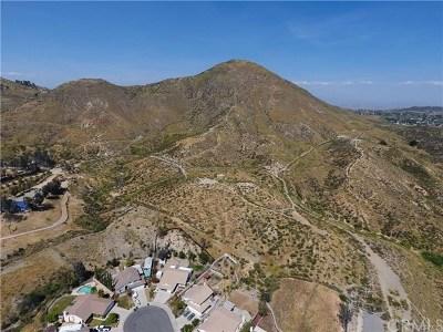 Wildomar Residential Lots & Land For Sale: 22999 Vista Del Agua