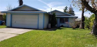 Wheatland Single Family Home For Sale: 161 F Street