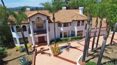 Escondido Single Family Home For Sale: 2563 Summit Drive