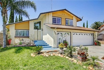 Rialto Single Family Home For Sale: 327 E Chaparral Street