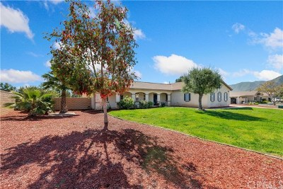 Lake Elsinore Single Family Home For Sale: 30618 Via Lakistas