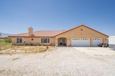 Phelan Single Family Home For Sale: 9370 Smith Road