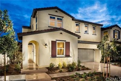 Corona Single Family Home For Sale: 3020 Via Segovia