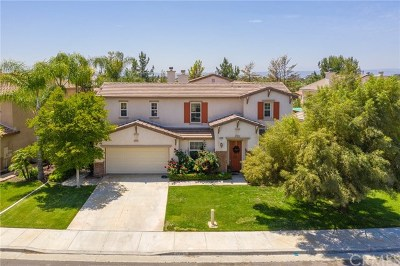Winchester Single Family Home For Sale: 31743 Pepper Tree Street