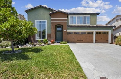 Murrieta Single Family Home For Sale: 37183 Bunchberry Lane