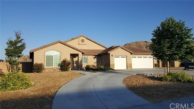 Apple Valley Single Family Home For Sale: 15541 Lookout Road